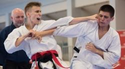 Puchar Europy w karate tradycyjnym